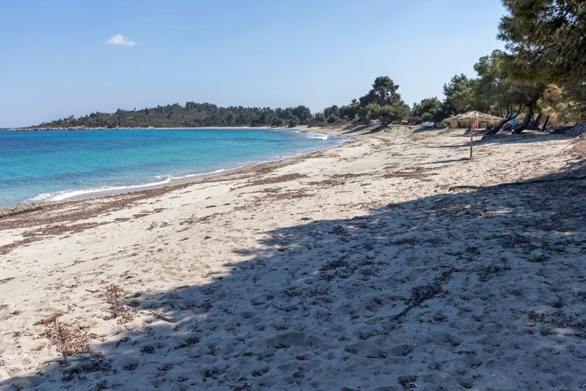 Xenia Golden Beach at Kassandra Peninsula, Chalkidiki