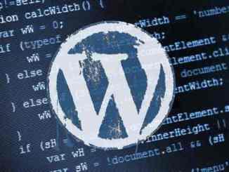 Vulnerability Wordpress