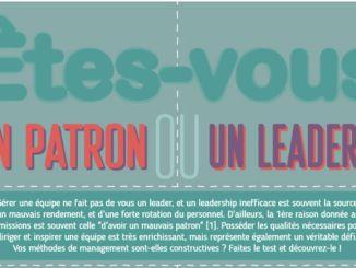 wrike leader ou patron