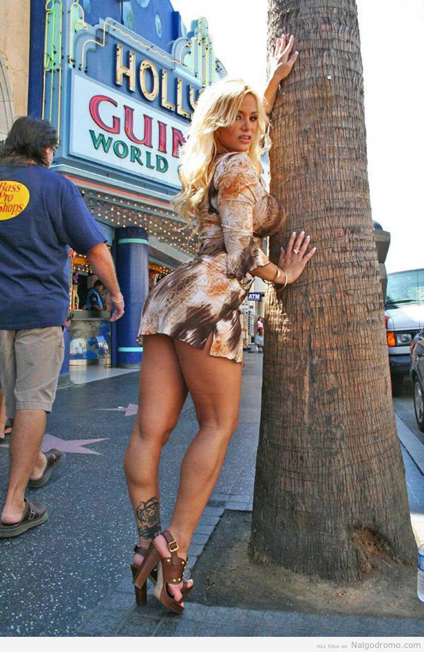Shyla Stylez, milf madura en minifalda - Nalgodromo