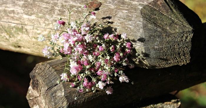 legendy litewskie kwiaty