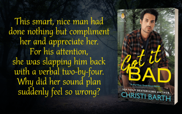 Teaser Graphic - Got It Bad by Christi Barth - 3