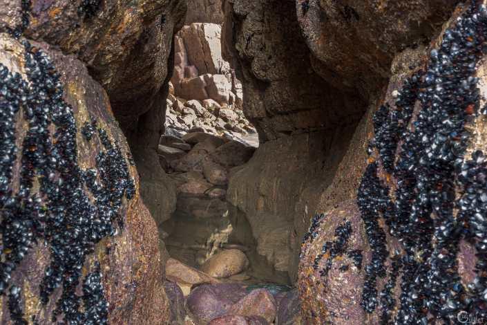 Grotte du Cap 24