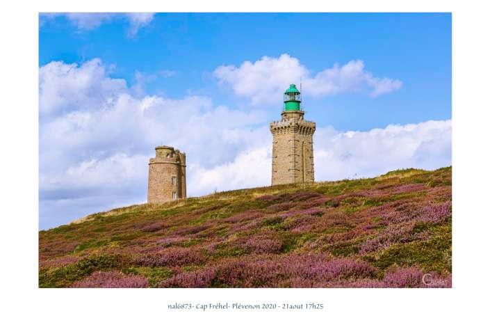 portfolio du photomarcheur - la bruyère en fleurs au Cap Fréhel