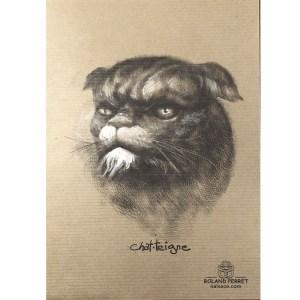 Chat - teigne - châtaigne - dessin original sur papier kraft-Roland Perret - jeu du chat-llenge