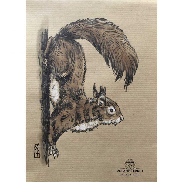 Ecureuil sur un tronc - dessin original sur papier kraft par Roland Perret - série des petits rongeurs