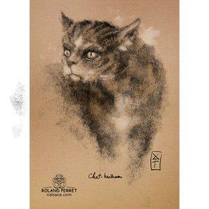 chat-hachures - dessin original sur papier kraft par Roland Perret - jeu du chat-llenge