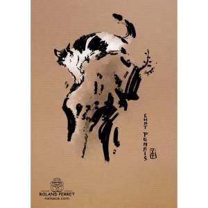 Dessin de chat à la japonaise (japonais) par Roland Perret, jeu du Chat-llenge. www.nalsace.com