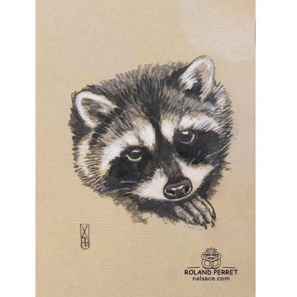 Raton laveur - dessin original sur papier kraft par Roland Perret - série des petits rongeurs
