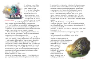 Nharry-Podterre_Page_13-14