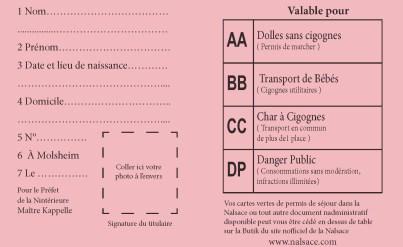 permis-conduire-cigognes-interieur