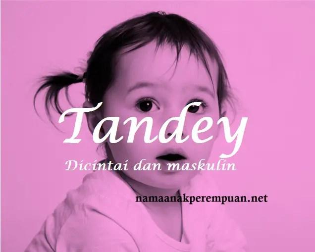 arti nama Tandey