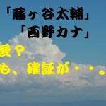 藤ヶ谷太輔と西野カナが熱愛?瀧本美織と破局して即乗換え?流石です