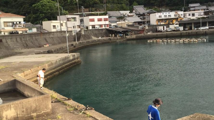 神谷漁港の釣り場紹介(和歌山中紀)常夜灯まわりのナイトエギングとアジング