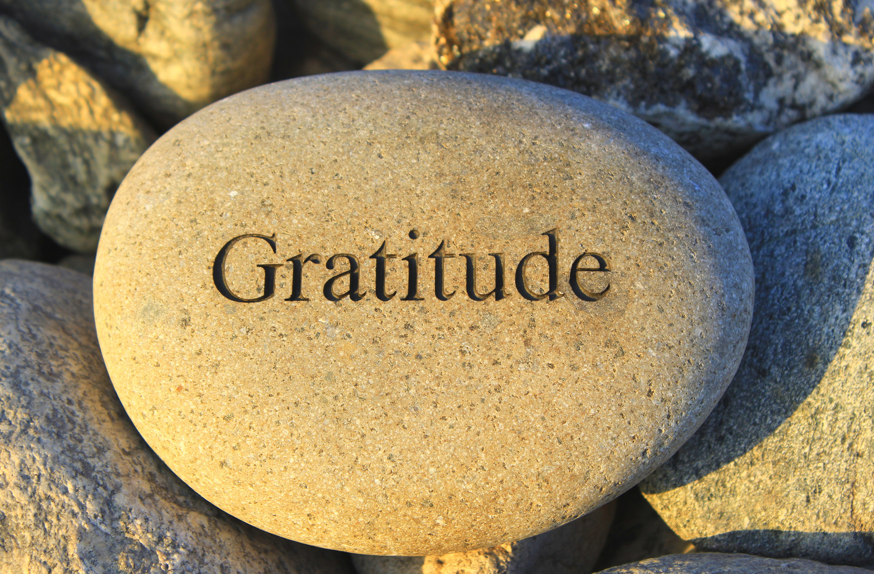 gratitude rock namaste family services