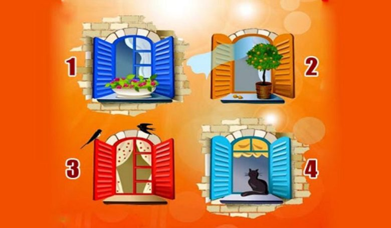 Which Window Would you ChooseWhat You Would Like to Look for in the World