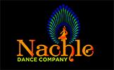 Logo of Nachle