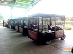 Car for Animal Safari at Ravenna