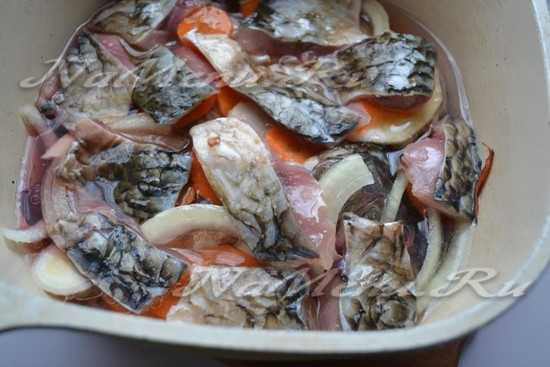 Carp jellied recipe  Lazy fish aspic from carp