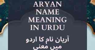 Aryan Name Meaning In Urdu
