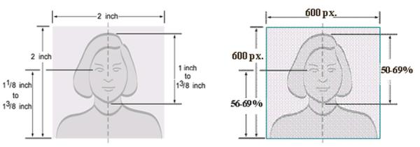 Требования к фото на Грин Карту в 2020 году: размер, параметры