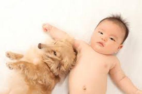 アレルギーと子供