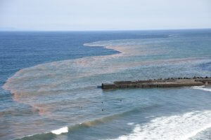 赤潮と青潮が混ざっている海