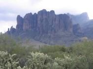 Arizona 018!