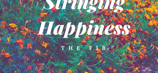 Stringing Happiness – 'The Fib'