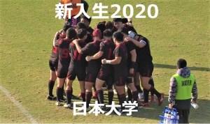 【逆風を越え旋風再び】日本大学ラグビー部 2020年度新入生