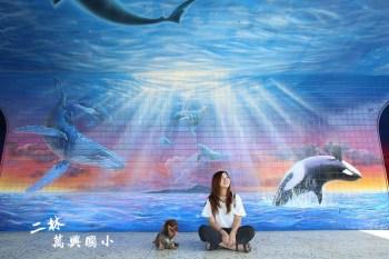 彰化二林》二林萬興國小。ig打卡點,超酷炫3D宇宙銀河,深海鯨鯊3D彩繪牆