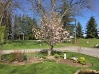 springtime activities 083