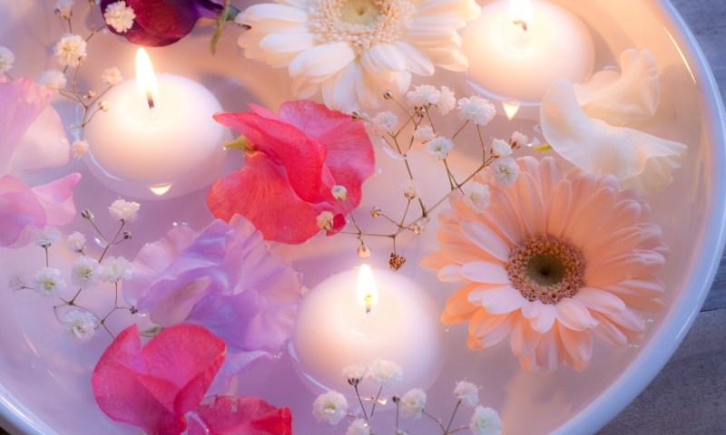 可愛いお花