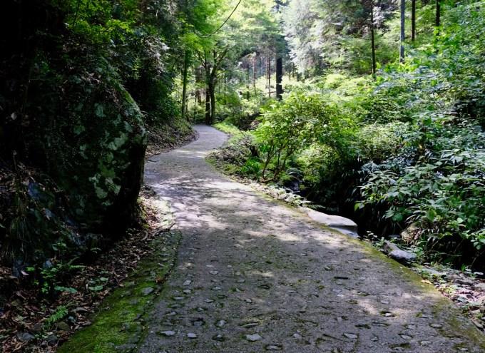蛇滝への道