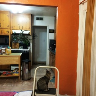 foster-on-step-stool