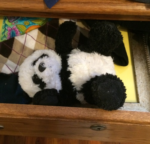 panda in drawer