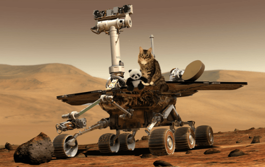 both on mars rover2