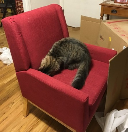 chairwithcushion