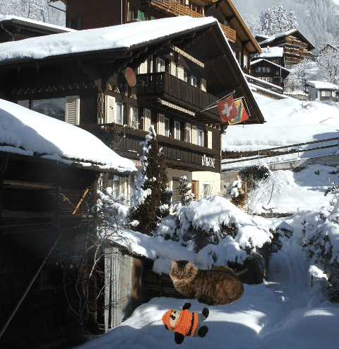 a in front of chalet