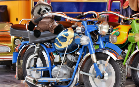 a panda on motorcycle