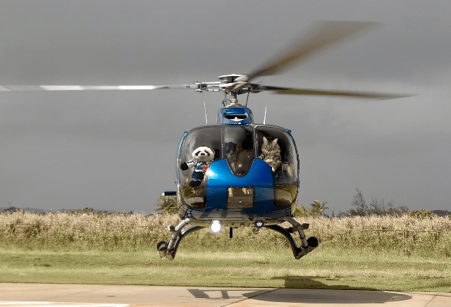 a landing helicopter
