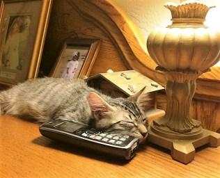 by-phone-on-dresser