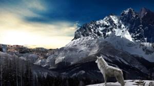 狼と人間-グリム童話-イメージ