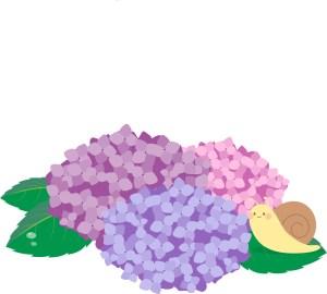 紫陽花-泉鏡花-イメージ