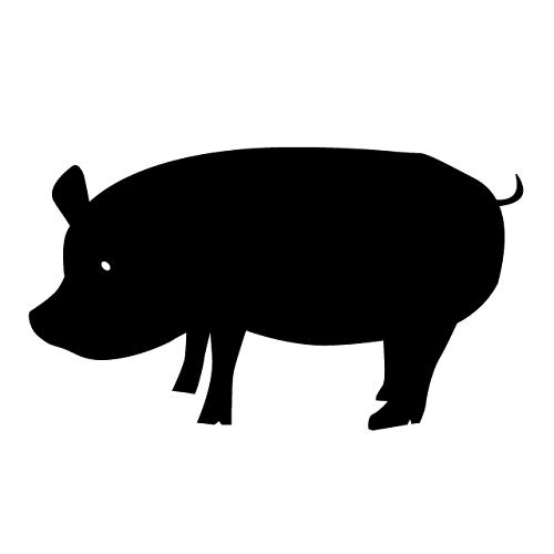 ホムンクルス的豚の話