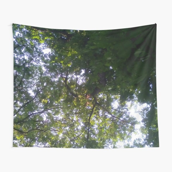 Franklin Park Boston Wilderness - Overhead View Tapestry