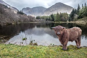 Reizen - Schotland