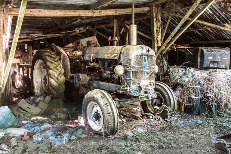 lost-in-woods-auto-vervallen-abandoned-urbex-belgie-natuurgeweld