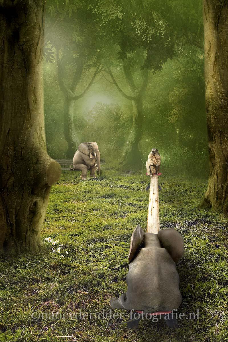 Animal-playground, bewerkingen, fantasie-foto's