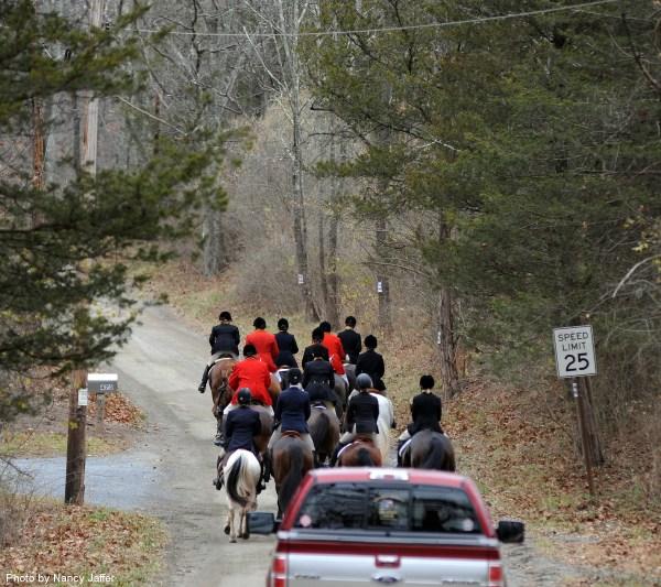 essex-foxhounds-thanksgiving-nj-nov-24-no-1562-traffic-300dpi